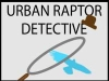 Urban Bird of Prey Detective