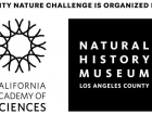 City Nature Challenge 2020 Event