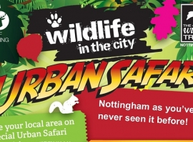 Your very own Urban Safari!